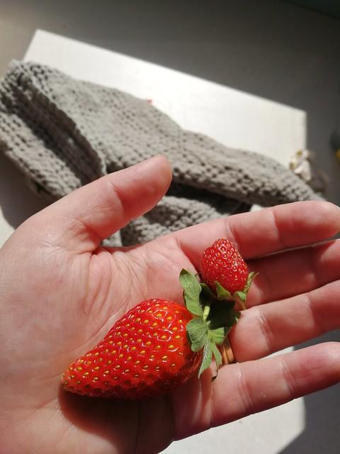 2 individual strawberries