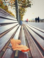 Watch it all fall in a blur~ #duesseldorf