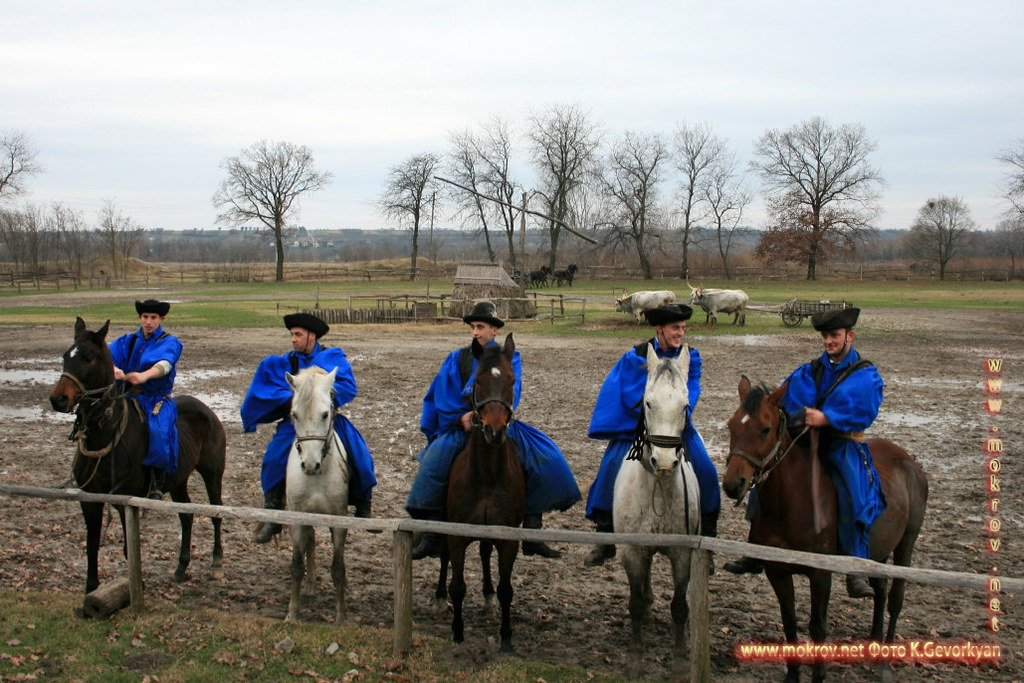 Конная Ферма Пуста  — Венгрия фотографии