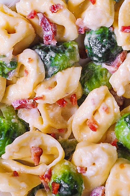 creamy pasta with bacon, Thanksgiving recipes, holiday main dish