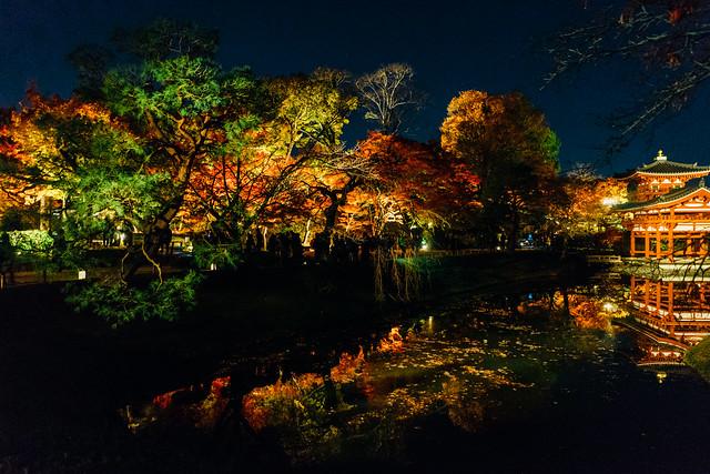 Kyoto_Byodoin_19