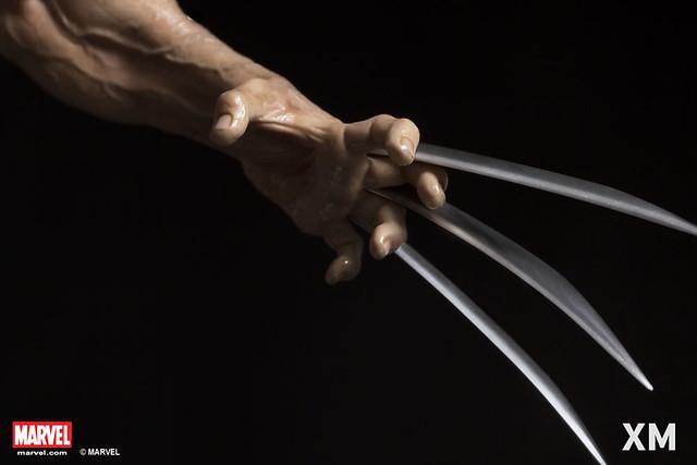 XM Studios Premium Collectibles 系列 Marvel【金剛狼 Weapon X 計畫】Wolverine - Weapon X Project 1/4 比例全身雕像作品