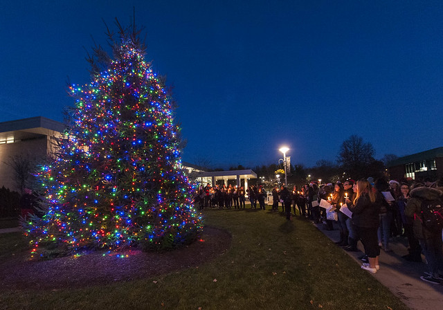 Quad Tree Lighting 11/30/17
