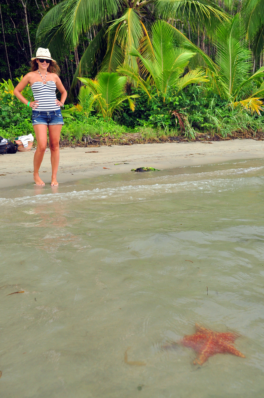 Viajar a Costa Rica / Ruta por Costa Rica en 3 semanas ruta por costa rica - 24377759958 3ae7333b1a h - Ruta por Costa Rica en 3 semanas