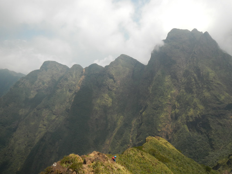 Saw-like Peaks