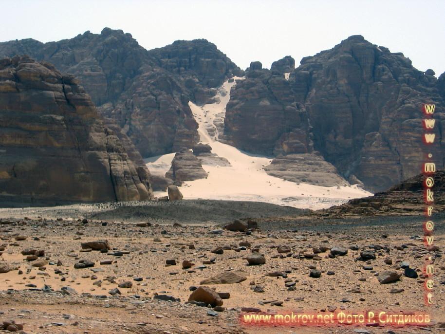 Синайская пустыня фотографии сделанные как днем, так и вечером