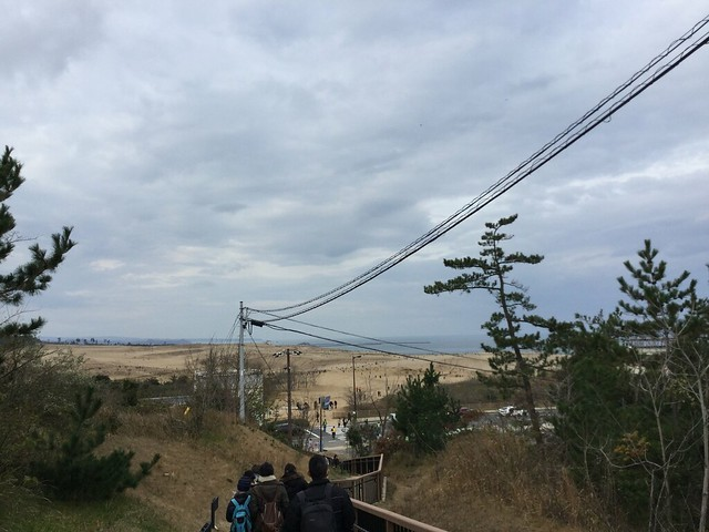 奥に見えるのが鳥取砂丘1
