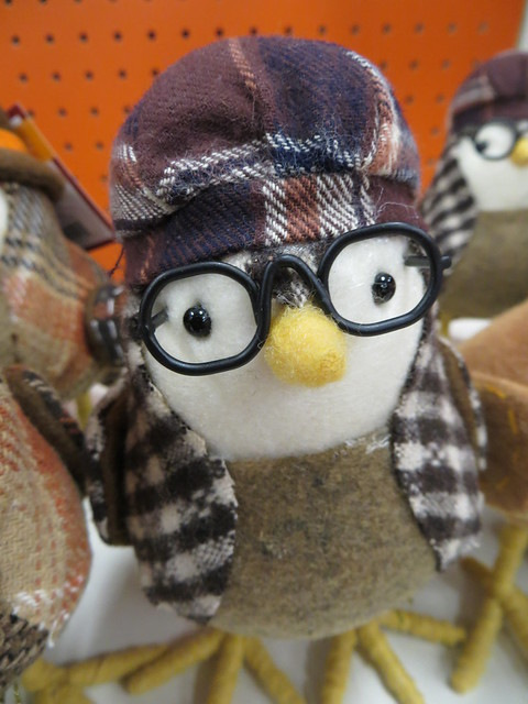 Bird In Glasses.