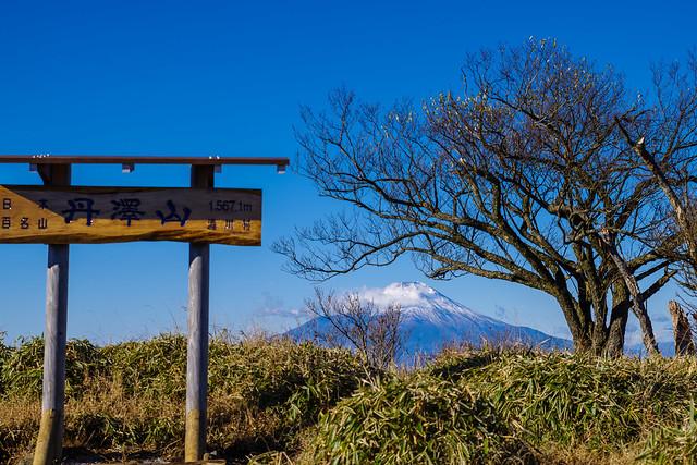 丹沢山頂より富士山