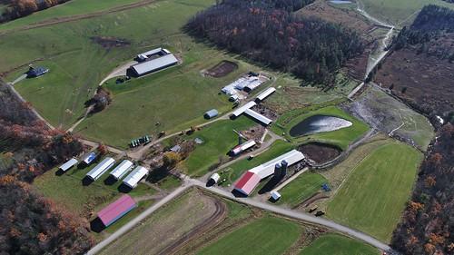 farm dairy drone quadcopter aerial photography phantom4advanced