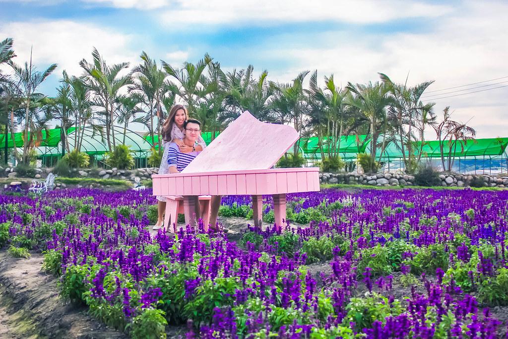zhong-she-guan-guang-flower-market-alexisjetsets-14
