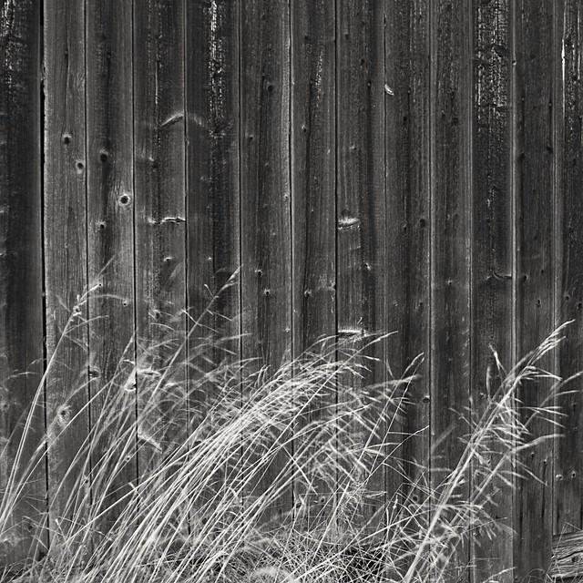Barn abstract