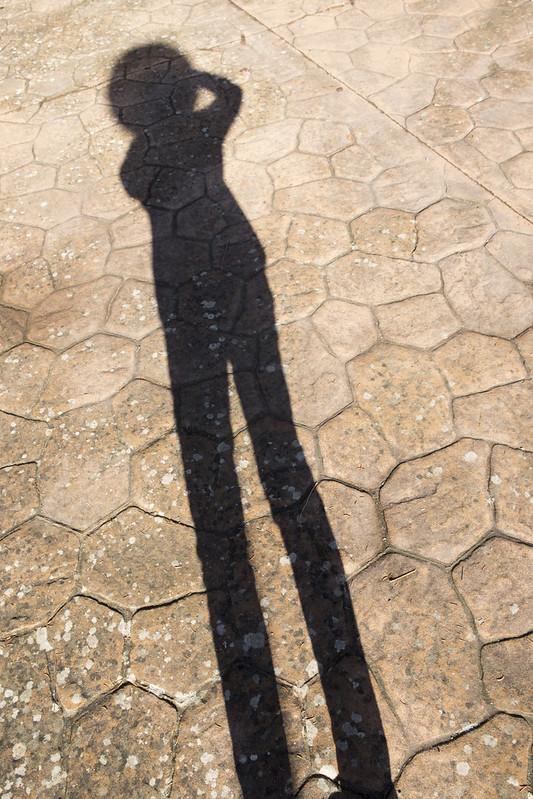 Sombra cabezona