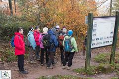 2017-11-19 10-41-06 Col du Litschhof - Wingen.jpg