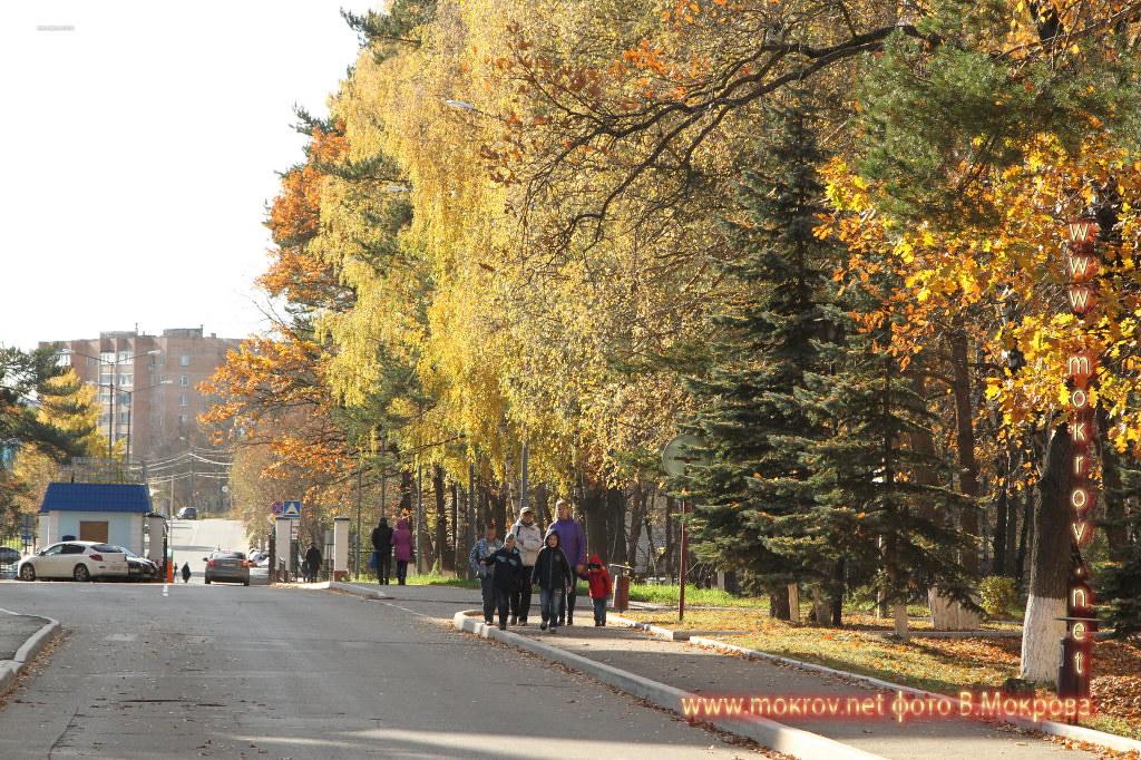 Город Калуга осенью