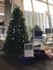 Te Hāpua: Halswell Centre SPCA Giving Tree 2017