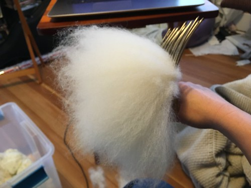 Lopez Island wool, two passes through the combs