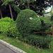 Creepy Topiary