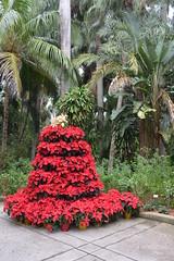 St Petersburg, FL - Sunken Gardens - Fountain Plaza
