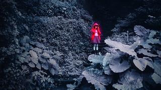紅衣小女孩 九份, Taiwan / Sigma 35mm / Canon 6D