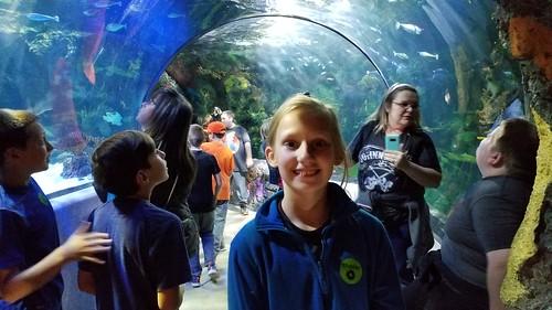 Nov 1 2017 Virginia Beach Field trip 5th Grade (8)