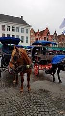 20171114 Brugge