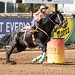 barrel_racing_20171116_354