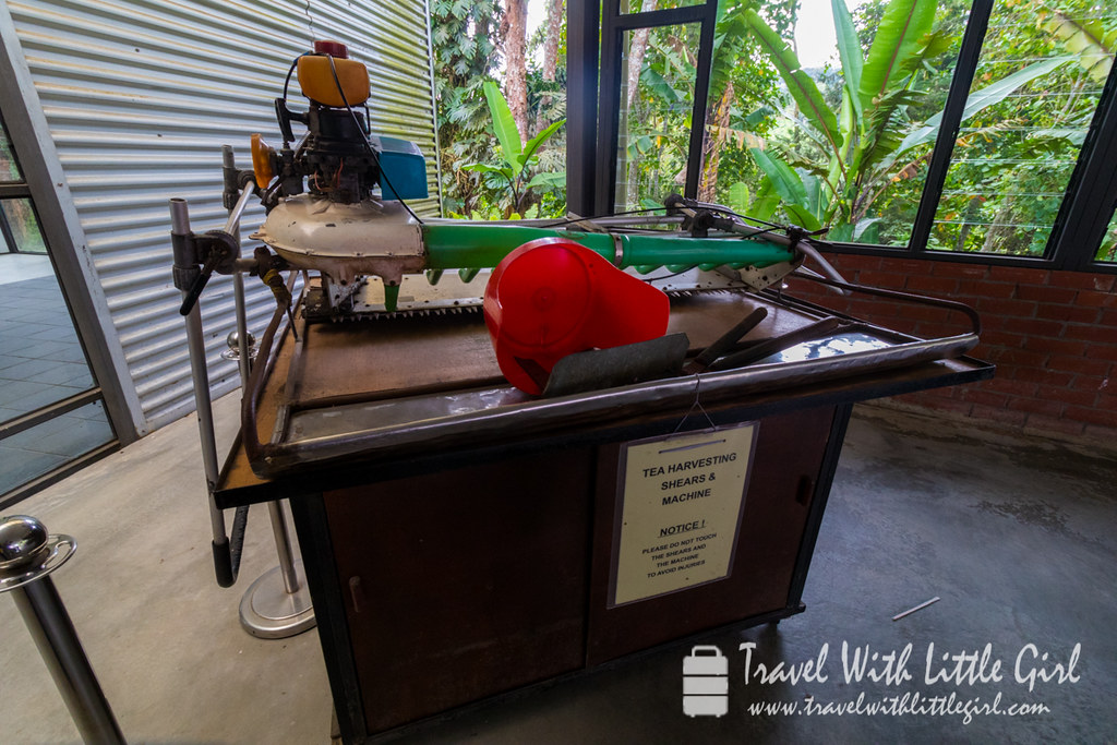 Old machine that used to harvest the tea leaves at BOH Plantation at Cameron Highlands, Malaysia