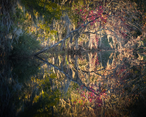 autumn canon fall georgia richmondhill color evening forest landscape light mood nature outdoor reflection symmetry warm water