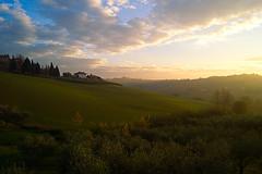 Landscape_1_Coriano_Puchy