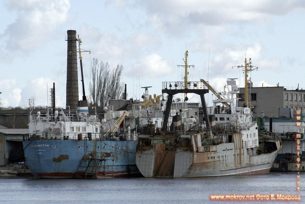 Калининградский торговый порт.