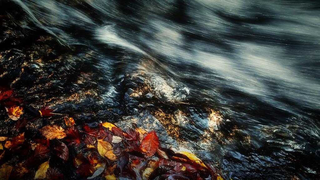 秋の渓流 #4