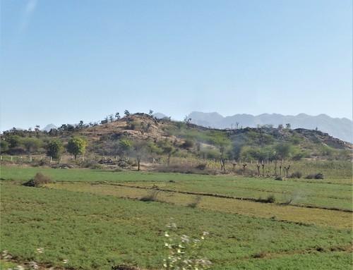 i-Mount Abu-udaipur (19)