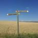 Small photo of Camino de Ababuj a Monteagudo. Teruel