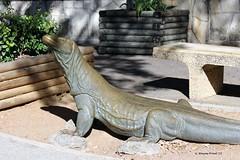 Komodo Dragon by Tom Tischler