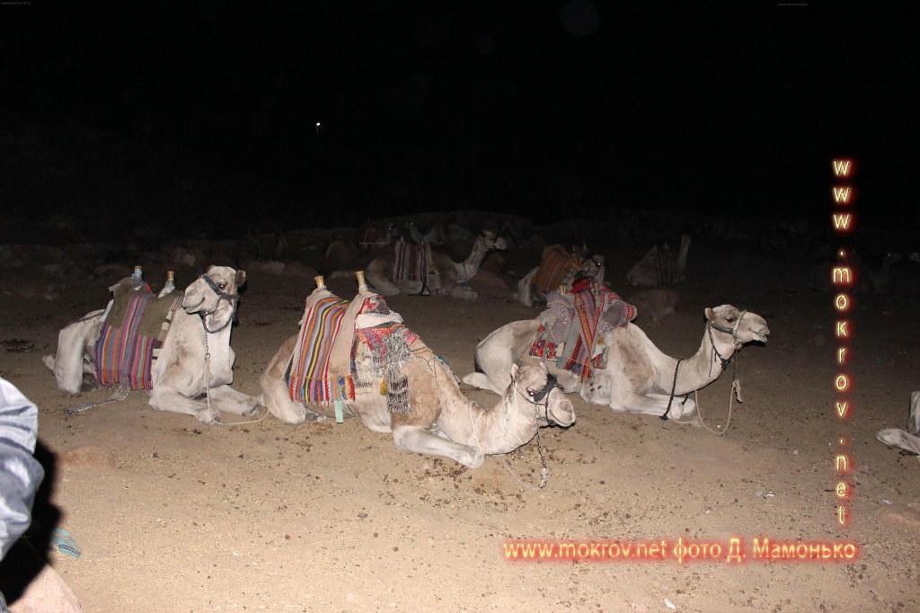 Синайские горы — Египт фотозарисовки