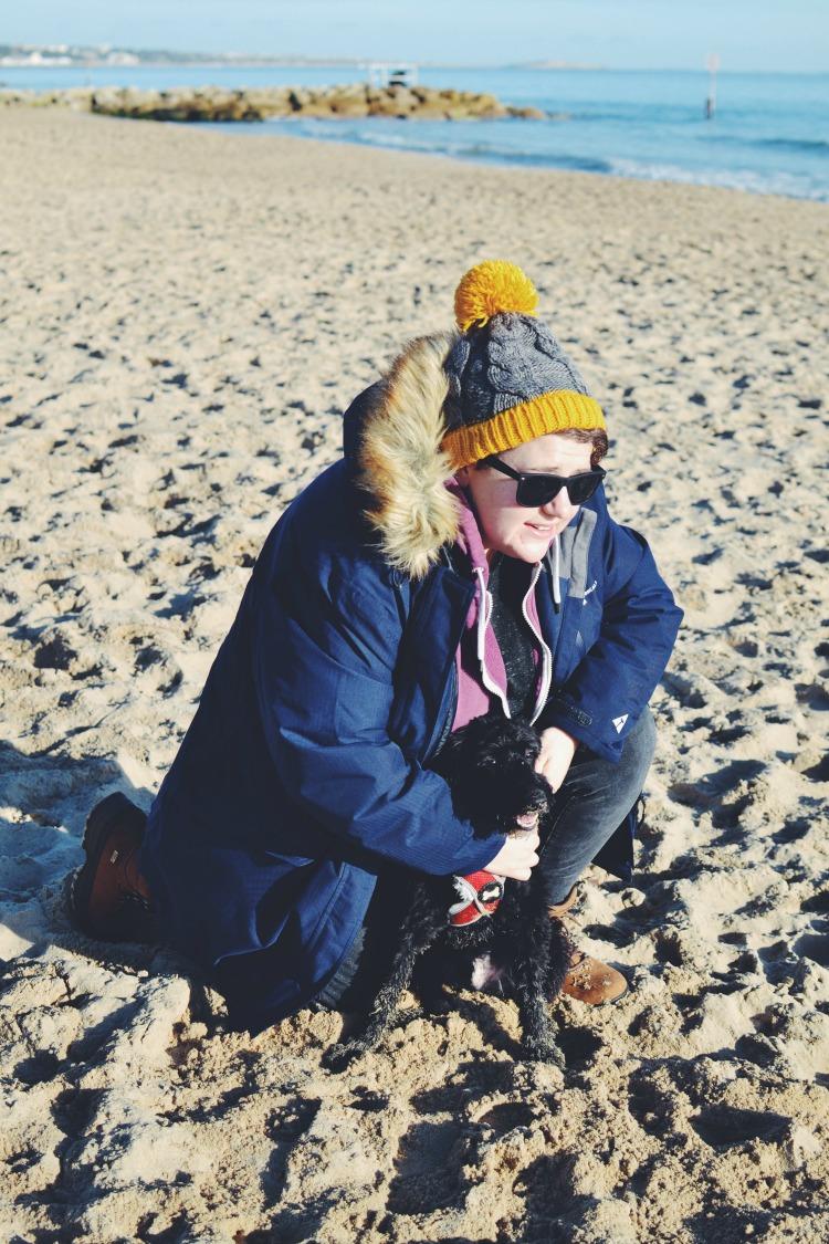 Dog walk on the beach