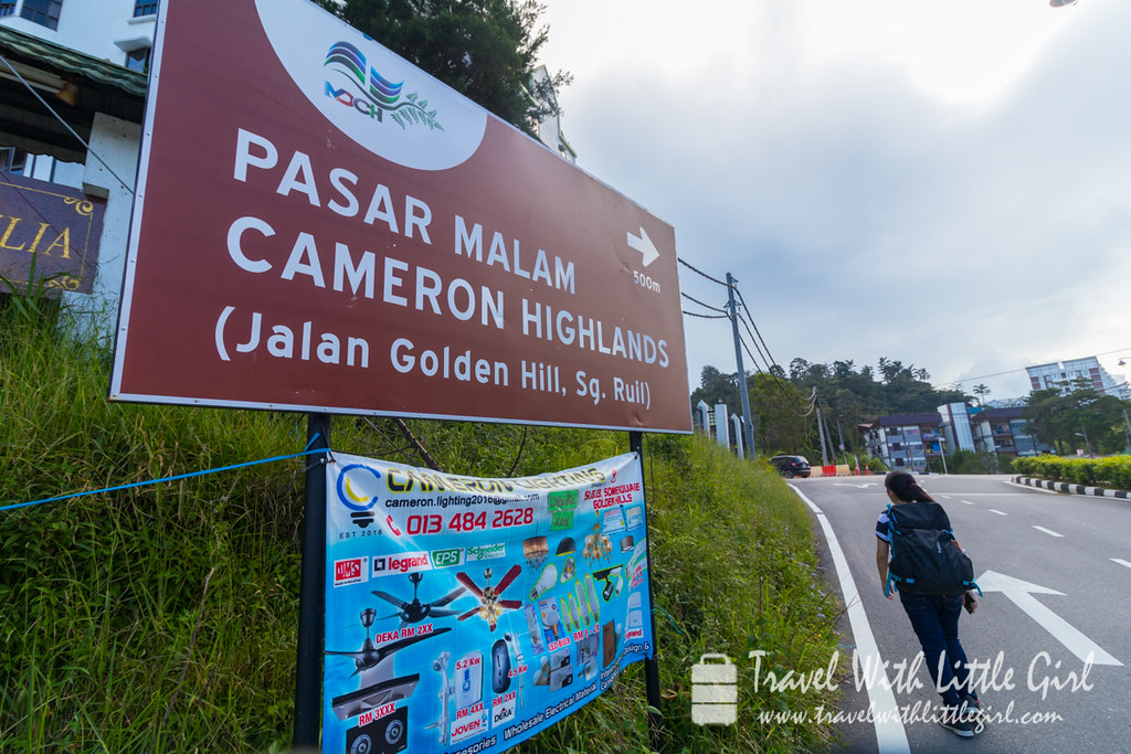 A walk to Pasar Malam, Cameron Highlands