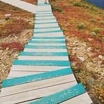 Skyline trial Cape Breton