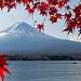 Mt. Fuji & Lake Kawaguchi, Japan