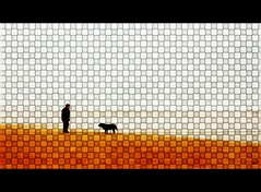 L'homme et son chien!
