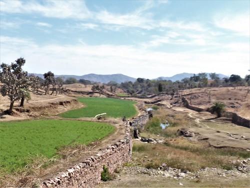 i-Kumbhagarh-Ranakpur-route (5)