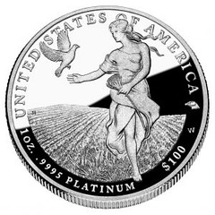 2011 American Eagle Platinum One Ounce Proof Coin Reverse