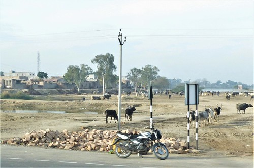 i-jodhpur-mount abu-route  (3)