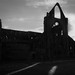 L2017_5667 - Tintern Abbey, Wye Valley, Monmouthshire, Wales