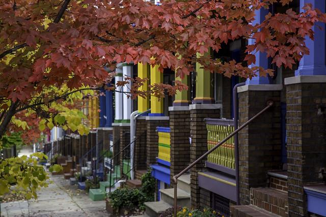 Fall in Baltimore