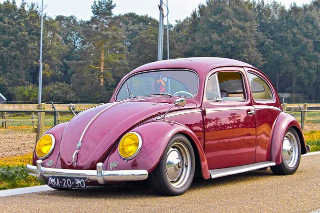 Volkswagen Typ 1 / 11 Beetle 1956 (8560)