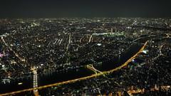 Tokyo Day Four