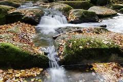 Prise d'eau d'Alzeau, Aude - Photo of Laprade