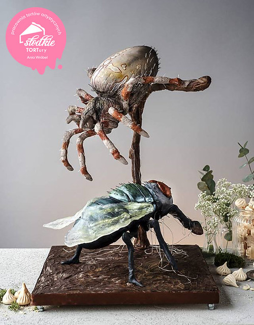 Spider Hunting for a Fly Cake by Ania Wróbel of Słodkie TORTury